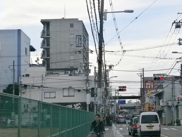 nishikawa3.jpg
